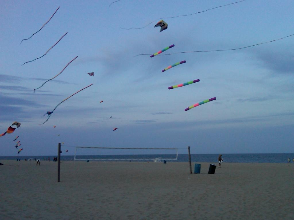 kites on beach