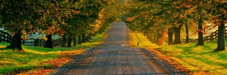 cropped-rvw-autumn-road.jpg