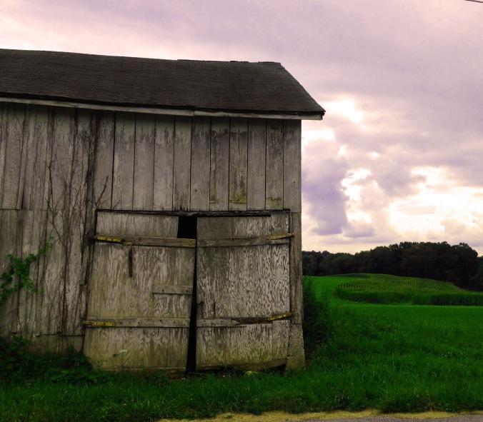 Maryland's Roadside Barns: Realizing A Communal Pulse